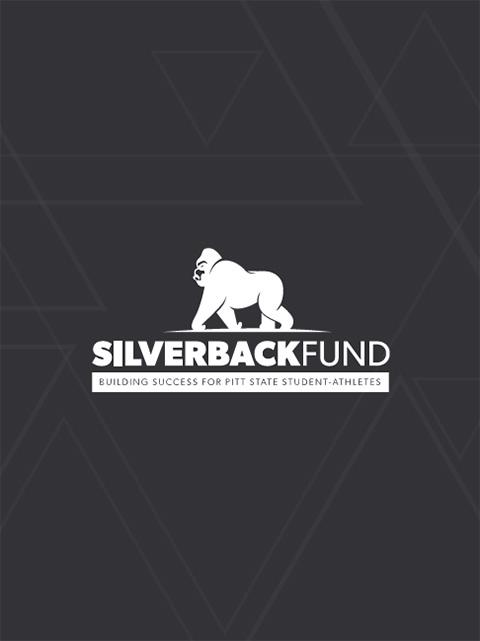 Silverback booklet